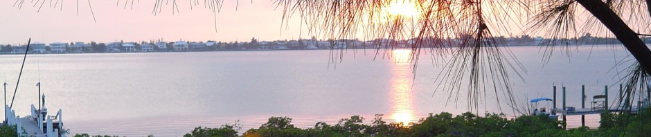 cropped-florida-sunset.jpg