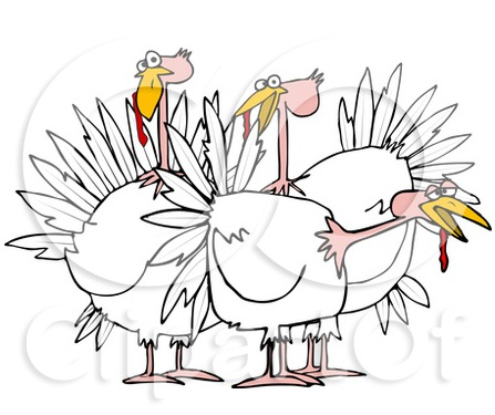 croped Cartoon-Of-A-Small-Flock-Of-White-Turkeys-Royalty-Free-Vector-Clipart